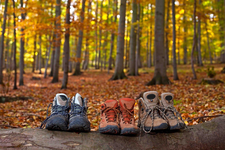 Autumn Motorhome Holiday Inspiration - family motorhome hire